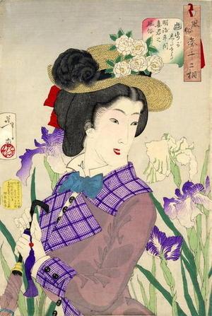 Tsukioka Yoshitoshi: Enjoying a stroll- A Lady of the Meiji Era — 遊歩がしたそう - Japanese Art Open Database