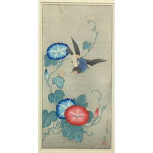 Akiyo: Morning Glory and 100-Song-Birds — 朝が穂の百歌鳥 - Japanese Art Open Database