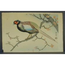 麻田辨次: Pheasant - Japanese Art Open Database