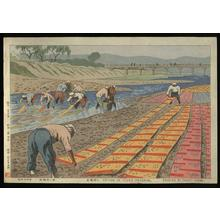 藤島武二: Drying of Yuzen Material (along the Kamo River) - Japanese Art Open Database
