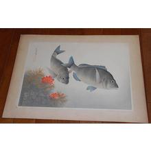 大野麦風: Black Sea Bream- Kurodai — クロダイ - Japanese Art Open Database