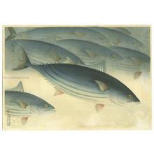 大野麦風: Bonito — カツオ - Japanese Art Open Database