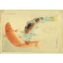 大野麦風: Brocade Carp- Higoi — ヒゴイ - Japanese Art Open Database