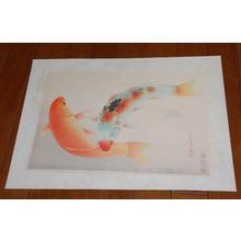 Bakufu Ohno: Brocade Carp- Higoi — ヒゴイ - Japanese Art Open Database