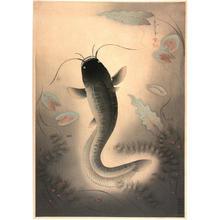 大野麦風: Catfish — なまず (Namazu) - Japanese Art Open Database
