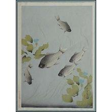 大野麦風: Crucian Carp — フナ - Japanese Art Open Database