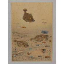 Bakufu Ohno: Flounder - Japanese Art Open Database