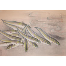 大野麦風: Gonzui- Striped Catfish — ゴンズイ - Japanese Art Open Database