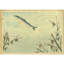 Bakufu Ohno: Grey Mullet- Bora — ボラ - Japanese Art Open Database