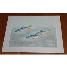 Bakufu Ohno: Japanese Rainbow Trout- Oikawa — オイカワ - Japanese Art Open Database