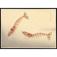 Bakufu Ohno: Kuruma-Ebi- shrimps - Japanese Art Open Database