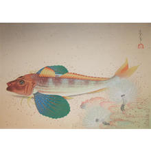 大野麦風: Sea Robin - Japanese Art Open Database