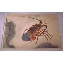 Bakufu Ohno: Spiny Lobster — 伊勢海老 - Japanese Art Open Database