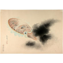 Bakufu Ohno: Squid - Japanese Art Open Database