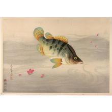 Bakufu Ohno: Unknown 5 - Japanese Art Open Database