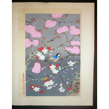 Bakufu Ohno: Bird and cherry blossoms - V1 — 桜と小鳥 - Japanese Art Open Database