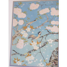 大野麦風: Bird and cherry blossoms- V2 - Japanese Art Open Database