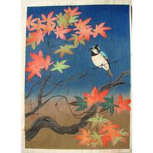 大野麦風: Bird and tree (2nd state) - Japanese Art Open Database