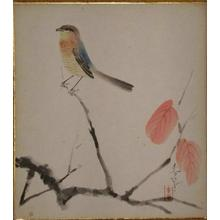 大野麦風: Bird on branch - Japanese Art Open Database