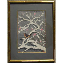 Bakufu Ohno: Bird on snowed cherry tree - Japanese Art Open Database