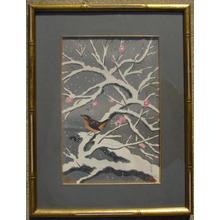 大野麦風: Bird on snowed cherry tree - Japanese Art Open Database