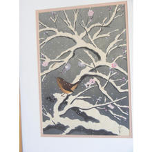 大野麦風: Bird on snowed cherry tree - Japanese Art Open Database