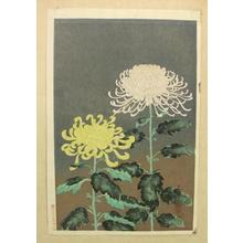 大野麦風: Chrysanthemums- Type 1- Variant 1 - Japanese Art Open Database