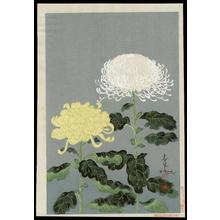 Bakufu Ohno: Chrysanthemums- Type 1- Variant 3 - Japanese Art Open Database
