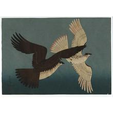 Bakufu Ohno: Hawks - Japanese Art Open Database