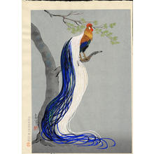Bakufu Ohno: Long Tailed Cock - Japanese Art Open Database
