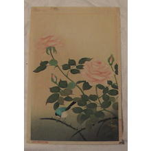 大野麦風: Red Rose (large oban) - Japanese Art Open Database