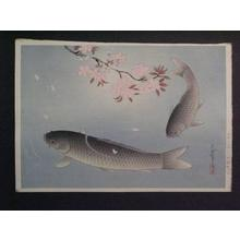 Bakufu Ohno: Sakura and Two carp — 桜に真鯉 - Japanese Art Open Database