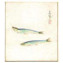大野麦風: Sardines - Japanese Art Open Database