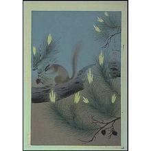 Bakufu Ohno: Squirrel in a pine tree - Japanese Art Open Database