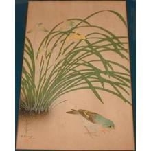 Bakufu Ohno: Unknown, bird and plant - Japanese Art Open Database