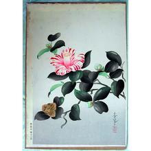 大野麦風: Camellia — 椿花図 - Japanese Art Open Database