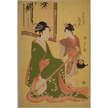 細田栄之: Mitsuito of the Hyogoya House — 兵庫屋内三つ糸 - Japanese Art Open Database