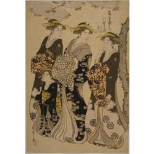 細田栄之: The Courtesan Komurasaki of the Tsunotamaya House — 魚玉屋うち小むらさき - Japanese Art Open Database