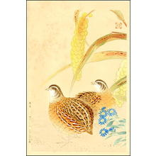Fukuda Suiko: Quail & Grasses - Japanese Art Open Database