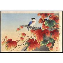 Gakusui Ide: Japanese Ivy and Titmouse - Japanese Art Open Database