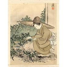 尾形月耕: Opening the Teahouse - Japanese Art Open Database