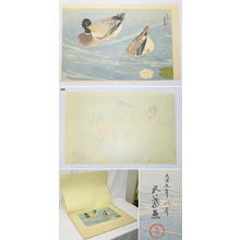 橋口五葉: Mandarin Ducks — 鴛鴦鴨 - Japanese Art Open Database