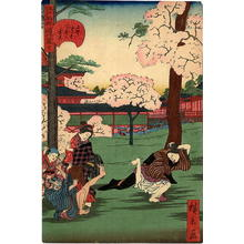 Utagawa Hirokage: Ueno Futatsu-do, Silly Game Under Cherry Trees - Japanese Art Open Database