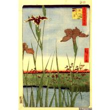 歌川広重: The Iris Garden at Horikiri — 在 - Japanese Art Open Database