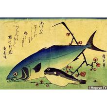 Utagawa Hiroshige: Unknown title — 魚づくしより あわびとさよりに桃 - Japanese Art Open Database