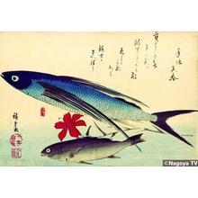 Utagawa Hiroshige: Unknown title — 魚づくしより 飛魚といしもち - Japanese Art Open Database