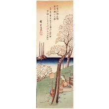 歌川広重: Cherry Blossoms at Gotenyama, Spring - Japanese Art Open Database