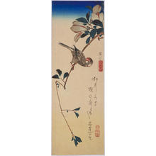 歌川広重: Magnolia and Java Sparrow — 木蓮に文鳥 - Japanese Art Open Database