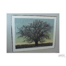 星襄一: Unknown, leafless tree 2 - Japanese Art Open Database