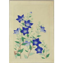 Ito Nisaburo: Chinese Bell Flower - Japanese Art Open Database